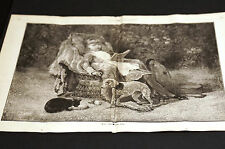 Girl BLACK CAT PUPPY THIRSTY Both Wanting a Drink of Water 1882 Med. Folio Print