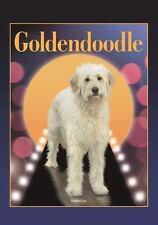Goldendoodle (Designer Dog Series) by Kathryn Lee (2016, Paperback)