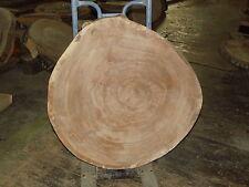 Baumscheibe, Holzscheibe, Tischplatte ca. 70 x 5 cm, Eiche, geschliffen