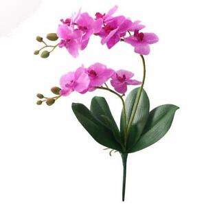 Orchids Artificial Flower Ornaments Real Touch 2 Branch With Leaves Decorations