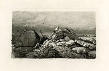 Antique Print-DREUMEL-RHINE-DYKE-FLOOD-HEEREWAARDEN-Trigt-Dubourgcq-1855