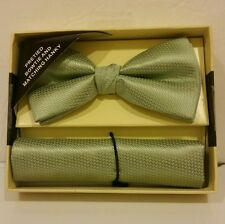 Lignt Green Banded Bow tie and Matching Hanky Set  )