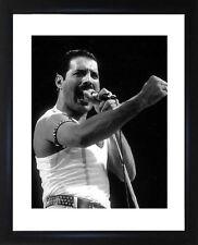 Freddie Mercury Framed Photo CP0165