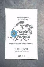 Tulsi Combo Pack, Rama, Vana, Krishna, Kapoor Tulsi, Organic, Medicinal Seeds