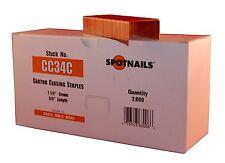 Spot Nails Cc34C 1-1/4-Inch Crown 3/4-Inch Leg Carton Closing Staple