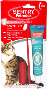 Petrodex Dental Kit for Cats, Malt Flavor Toothpaste, 2.5 Ounce (Pack of 1)