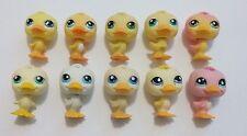 Littlest Pet Shop Duck Lot #51,108,150,825,917,1002,1062,1654, NO# Spring Tube