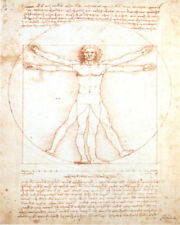 DAVINCI STUDY OF MAN   16 X 20 INCH ART PRINT POSTER