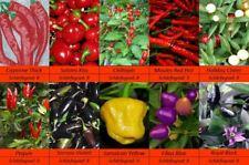 Chili Pepperoni Samen,10 Sorten Schärfegrad 8+, Sehr Scharf, Feinschmeckersorte,