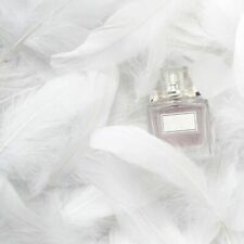 100pcs Natural Goose Feathers 8-12Cm Swan Plume DIY Carnival Decoration Craft