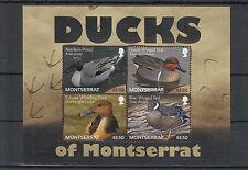 Montserrat 2012 MNH Ducks 4v M/S Birds Northern Pintail Teal Whistling Duck