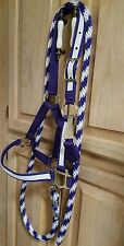 New Nylon Halter large pony purple with white overlay w/matching candy cane lead