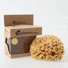 Natural Kalymnos Greek Sea Sponge (Honeycomb) 4'' - 4.5''/ Bath/Body/Baby/Family
