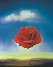 The Rose Meditative, 1958 by Salvador Dali Art Print Floral Poster 11x14