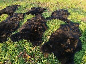 Top Eco Sheep Skins Sheepskin Lamb Fur Lambskin Deep Black 110-120 CM New