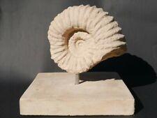 Ammonit Fossil Sandstein Skulptur Figur  – für Haus und Garten (3181)