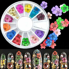 12Color 3D Nail Art Sticker Dried Flower Art Tip UV Gel Acrylic Decoration Wheel