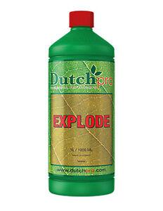 Dutch Pro Explode Bloom Stimulator Nutrients & Minerals to Plants - 1L