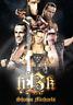 Shawn Michaels Poster Art Print Wrestling Print 8x10 (UK A4) Heartbreak Kid HBK