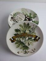 6 Pottery Barn PARIS Charcuterie Braine Appetizer Salad Plates Bread Cheese b45