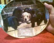 Franklin Mint Take me Home Limited Edition Oval Plate by Nigel Hemming