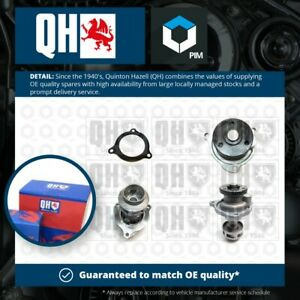 Water Pump fits FORD KA 1.3 02 to 08 Coolant QH 1089795 1219296 1229571 1322572