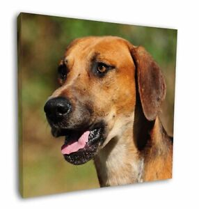 """Foxhound Dog 12""""x12"""" Canvas Wall Art Picture Print, AD-FH1-C12"""