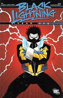 Black Lightning Year One by Cully Hamner & Jan van Meter TPB 2009 DC Comics OOP