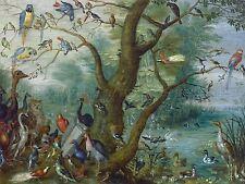 JAN VAN KESSEL CONCERT BIRDS OLD ART PAINTING POSTER PRINT BB5801A