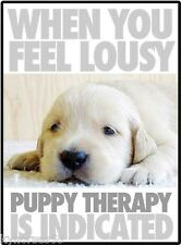 Dog Humor Puppy Therapy Refrigerator Magnet