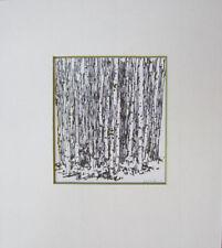 Birkenwald Bäume  Zeichnungl auf Papier  Hans O.Klassen  Skizze