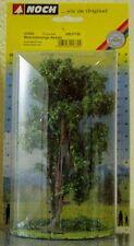 NOCH 21660 Baum Mehrstämmige Akazie              #55204