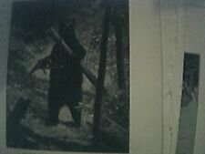 1890 book picture a brown bear caught with a pole trap