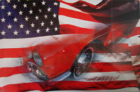 Mustang / American Flag Metal Sign