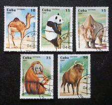 6Cuba   Sc# 3808-3812  ZOO ANIMALS National Zoo camel panda CPL SET of 5  1997