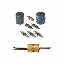 A/C System Valve Core and Cap Kit + Schrader Remover MT2912