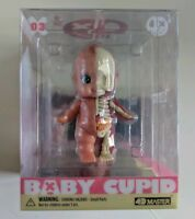 Baby Cupid Anatomy - Limited Ed.