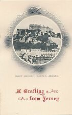 POSTCARD    JERSEY   Mont  Orgueil  Castle    GREETINGS