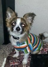 Chihuahua Small Size Puppy Dog Clothes Multi Colour Stripy T Shirt Pet Clothing