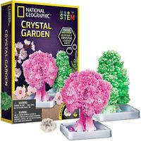 NATIONAL GEOGRAPHIC Crystal Garden – Grow Two Trees in 6 Hours Learning Guide