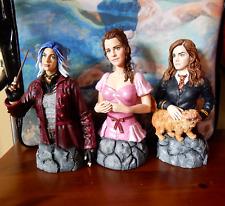 "Custom 1:6 Harry Potter 7/"" Busts Hermione Crookshanks Tonks Phoenix Emma Watson"