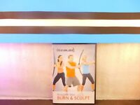 BodyBlade Blast Burn & Sculpt Body Workout on DVD
