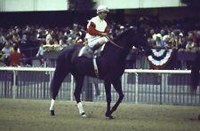 1975 Jacinto Vasquez RUFFIAN Belmont Park Great Match Horse Racing 8x10 Photo