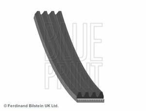 Alternator Drive Belt FOR AUDI 80 B4 2.0 CHOICE1/2 91->96 ABK ABT ACE w/ AC ADL