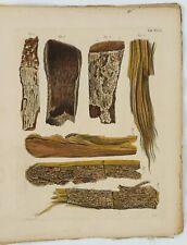 F. GOEBEL, Pharmaceutische Waarenkunde m. illum. Kupfern, Bd. 1, Heft 6, 1828