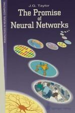 The Promise of Neural Networks