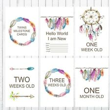 Twin Baby Milestone Cards, 4x6 Photo Prop, 40 cards, Dreamcatcher, Feathers
