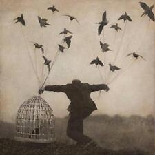 The Gloaming - Various Artists (NEW CD)