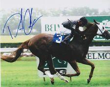 DAVID COHEN Signed BELMONT STAKES 8X10 Photo w/COA