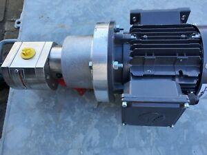 Lobe pump and motor